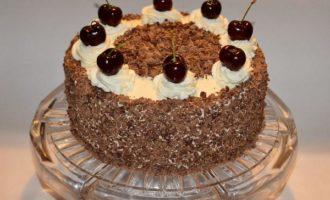 Рецепт торта Черный принц со сметаной в домашних условиях