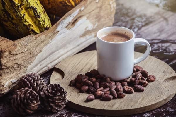 Вред несладкого какао для организма